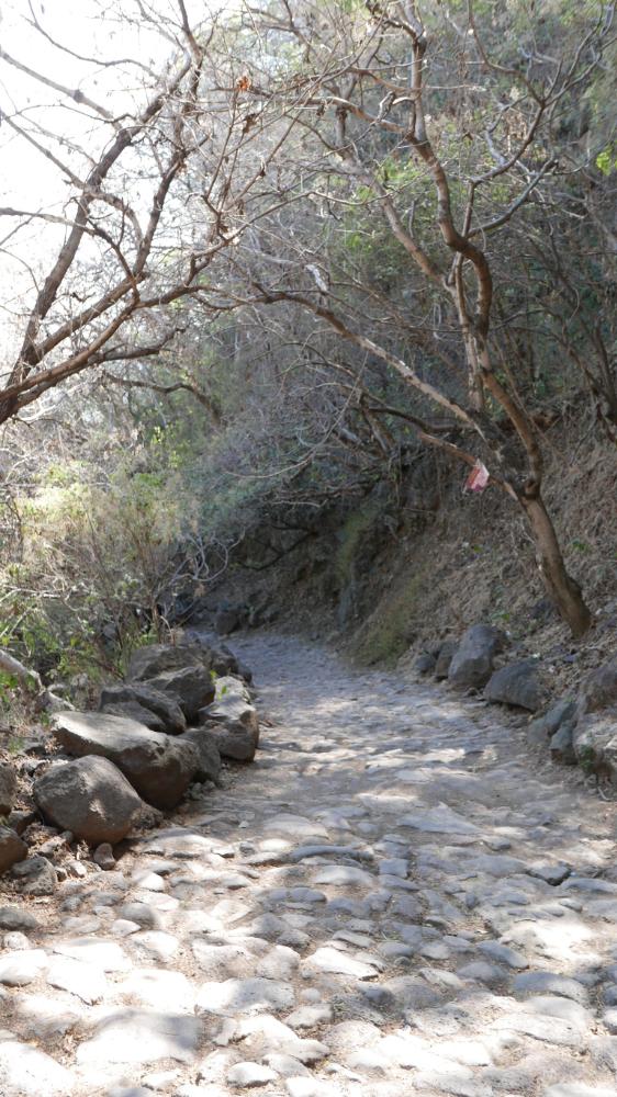 Rocky pathway down Barranca de Huentitan
