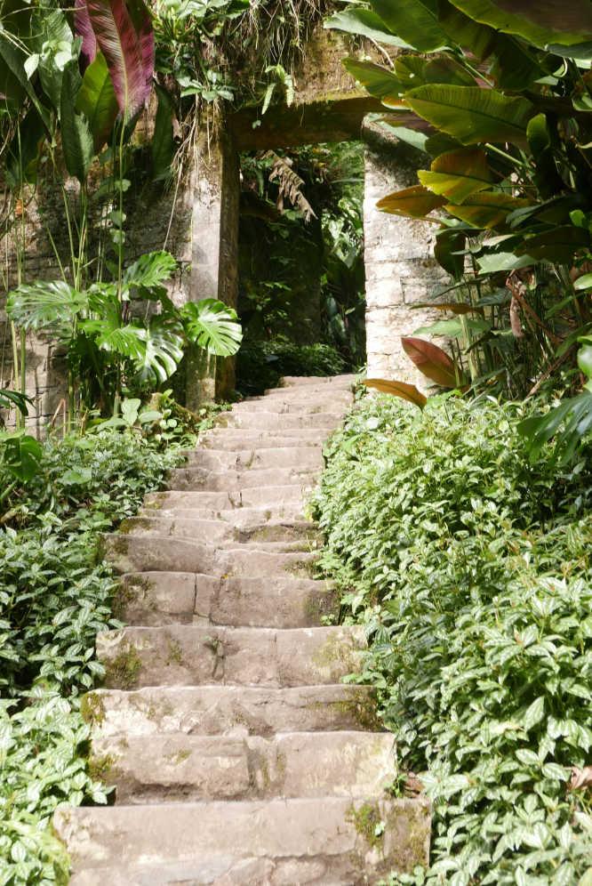 Staircase in Las Pozas surrealist garden in Xilitla