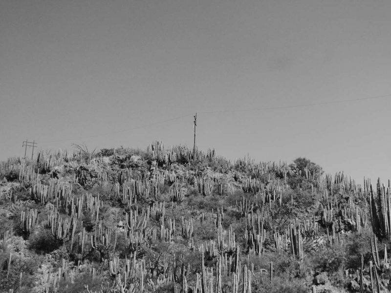 Desert landscape between Mexico City and Xilitla
