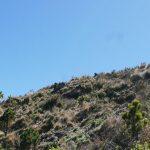 The rocky last stretch towards the summit of Santa Maria volcano
