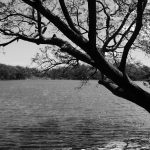 Lake in Charco Verde nature park on Ometepe island in Nicaragua