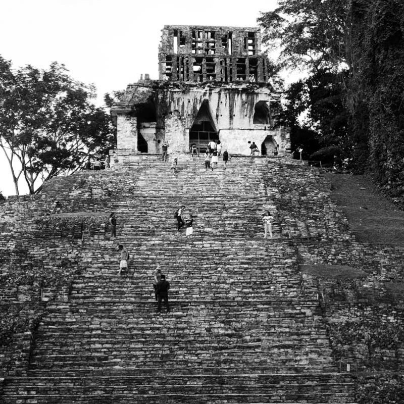 Stairs to one of the Temples of The Cross in Palenque