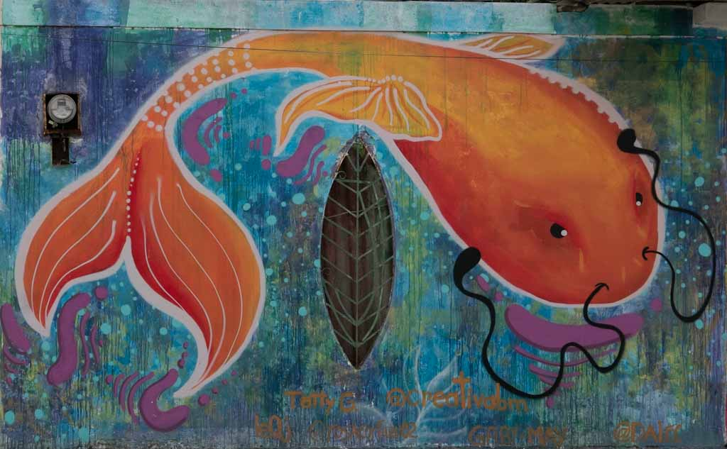 Street art, fish near university