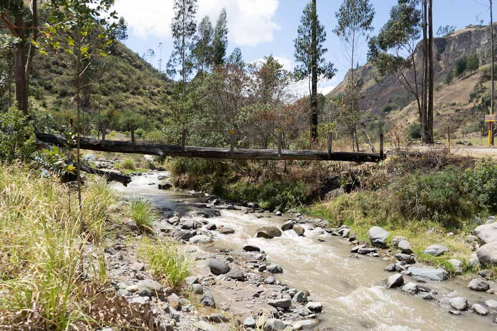 Tree bridge from afar on Quilotoa loop