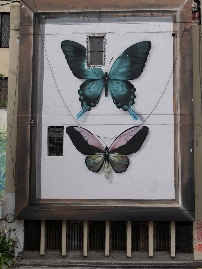 Quito street art: butterflies